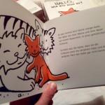 Kleine-orange-Katze-2